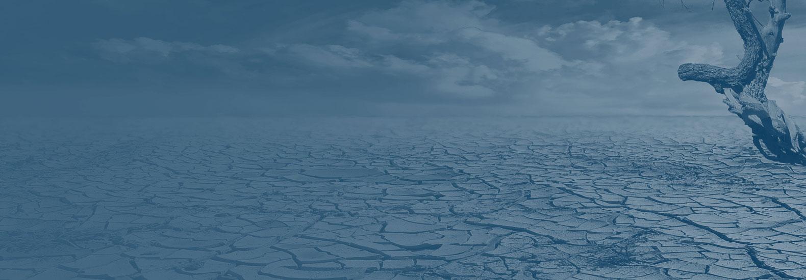 פרס פתרונות האקלים התוכנית: פרס פתרונות האקלים מוגש כדי לתמרץ ולהניע את החוקרים הטובים והמבריקים ביותר ו/או ארגונים ללא כוונת רווח בכל רחבי ישראל במימון השינוי במשבר האקלים.